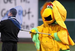 Interleague Baseball Preview:  Pittsburgh Pirates at Los Angeles Angels